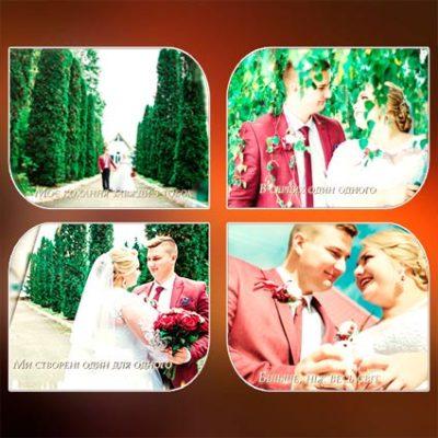 Вступление к свадьбе / проект «В день свадьбы»