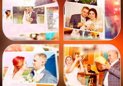 Вступление к свадьбе / проект «Счастливый день» / Житомир